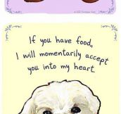 Dog Honest Confessions