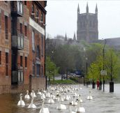 England Flooding Aftermath