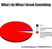 Whenever I Break Something