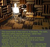 The Quietest Room In The World