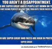 Friendly Self-Esteem Shark