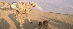27 Touching Photos of Soldiers and the Pets They've Met While At War