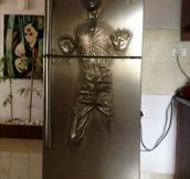 Solo Carbonite Fridge