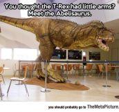 Even Tinier Arms