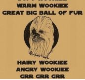 Soft Wookiee, Warm Wookiee