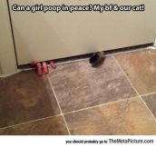 Bathroom Peace Disrupted