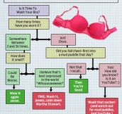 How Often Do You Need To Wash Your Bra?
