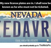 New License Plates