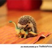 How The Dinosaurs Became Extinct