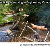 Engineers Go Camping