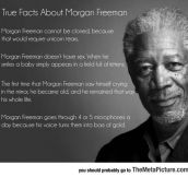 Facts About Morgan Freeman You Probably Didn't Know
