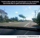 Giant Grasshopper Monster