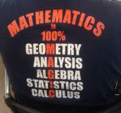 What Math Is Really All About