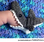 Little Shark Socks