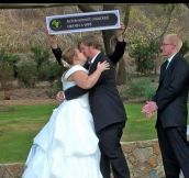 When Two Nerds Get Married