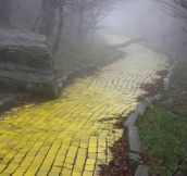 Now It's A Creepy Yellow Brick Road