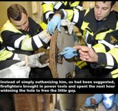 Firefighters Being Heroes