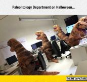 Paleontology Department