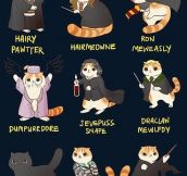 Harry Potter, Kitty Version