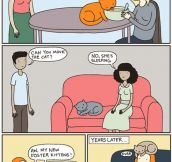 Cat People Behavior