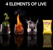 Four Elements Of Life