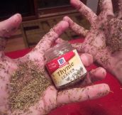It's Too Much Thyme