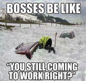 Bosses During The Harsh Winter