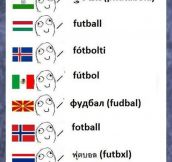 Some Linguistic Differences