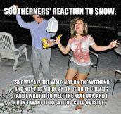 Reaction To Snow In The South