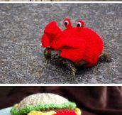 Fabulous Tortoise Cozies