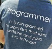The Meaning Of Programmer