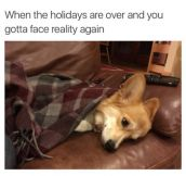 When The Holidays Are Over