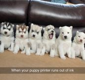 Puppy Printer