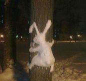 Follow The White Snow Rabbit
