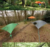 Suspended Tree Tents