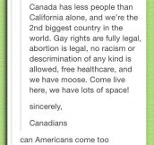No Americans, Sorry