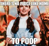 You're Right, Dorothy