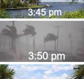 How The Weather Works In Florida