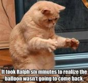 Poor Ralph, He Looks So Disappointed