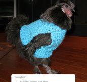 Fabulous Chicken