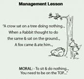 Helpful Management Lesson