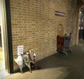 Flowers At Platform 9¾