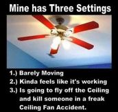 Real Fan Settings