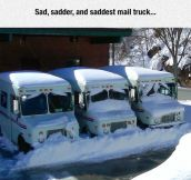 Mail Trucks With Emotions