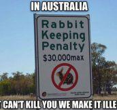Australian Laws