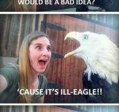 Hunting Eagles