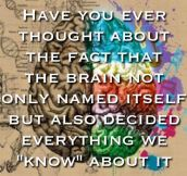 Tricky Brain