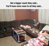 When You Get A Bigger Couch