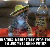Always Drink With Moderation