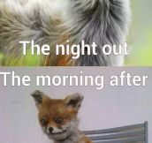 Night Out Vs. Morning After